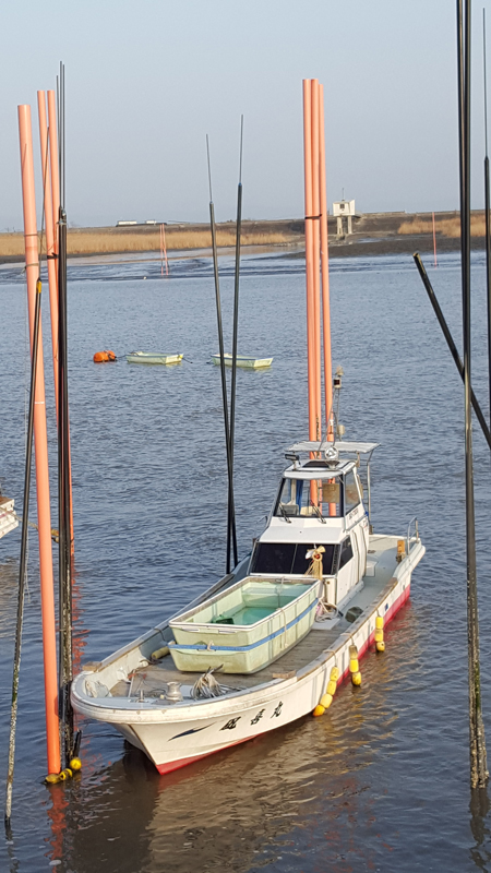 Nori Ernte - Mutter-Boot mit zwei Erntebooten